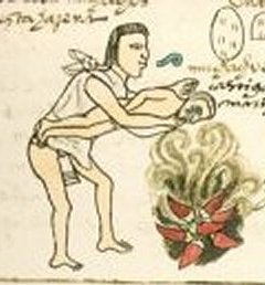 Codex Mendoza 60r, Chilli zur Bestrafung