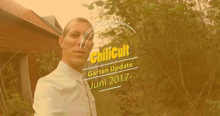 Garten-Update 4: Juni 2017