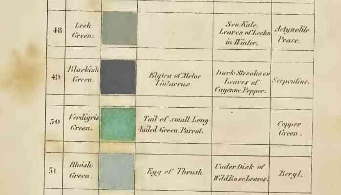Chilli Trouvée: Schwarz-Grün nach Syme, Werner's Nomenclature of Colours