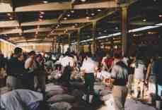 Tsukiji11