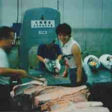Tsukiji15