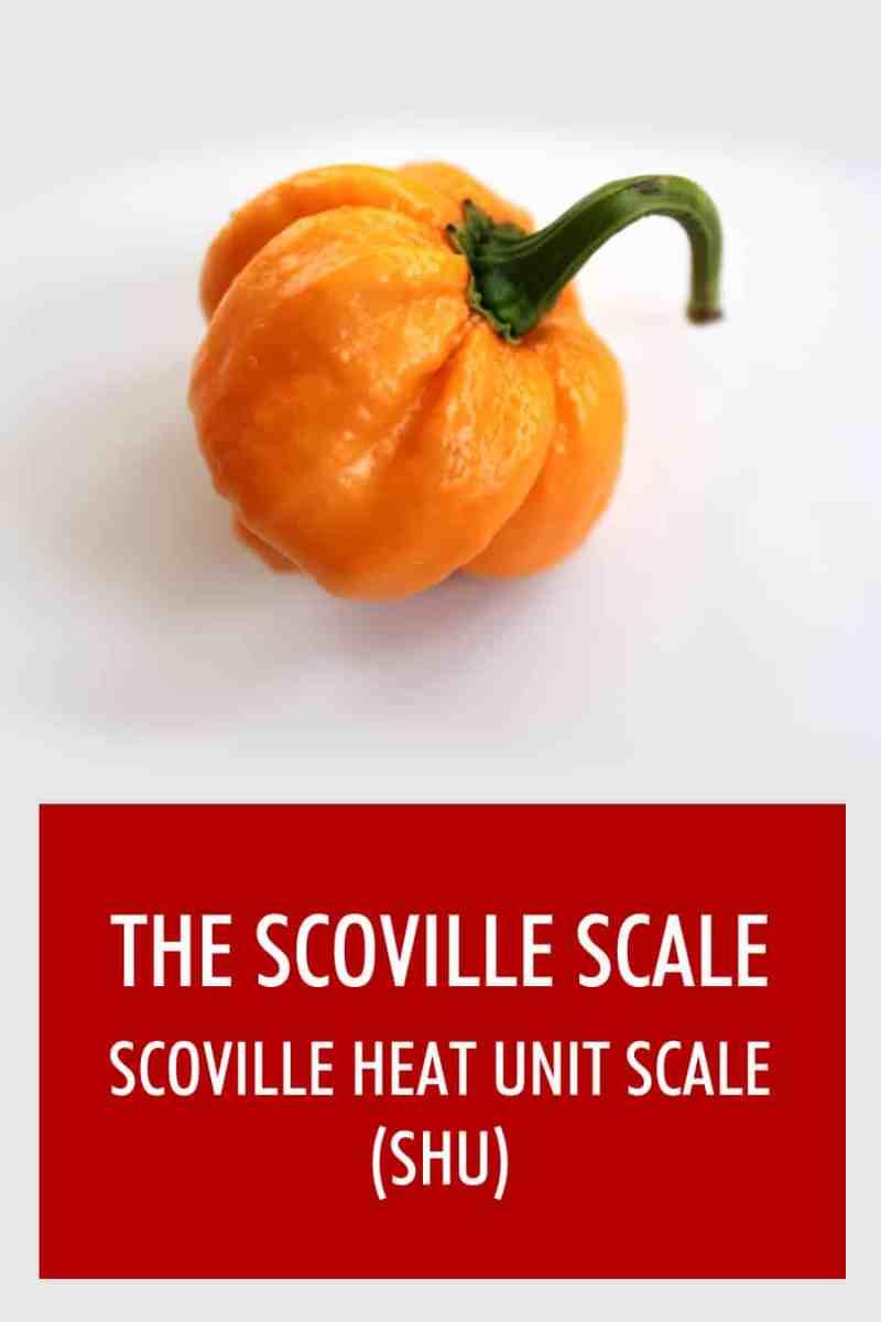 Showy Scoville Scale Scoville Scale Chili Pepper Madness