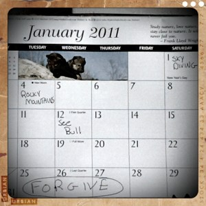 Calendar January 2011 for Tim McGraw Live Like You Were Dying