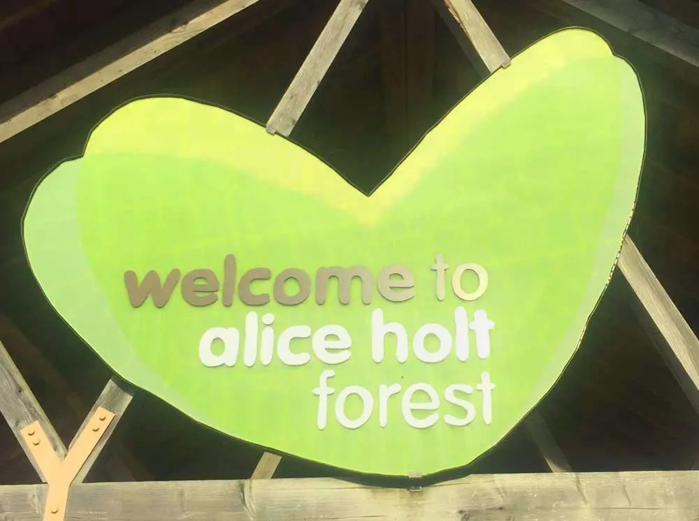 Iron age and roman relics. Alice Holt Forest Farnham Chimptrips