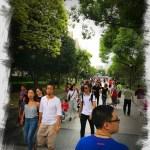 China, Shanghai, Yu Gardens