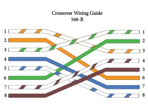 Cat 5 Crossover Cable Wiring, Cat, Free Engine Image For User Manual Download