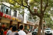 Mitten in der Stadt: Ein Affe!