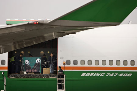 Pandas arrival at the Tao Yuan International airport of Taipei, Taiwan on December 23, 2008.