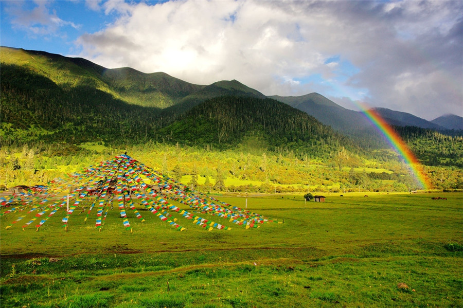 Glimpses of Tibet: Plateaus, people and faith