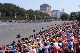 desfile m 33