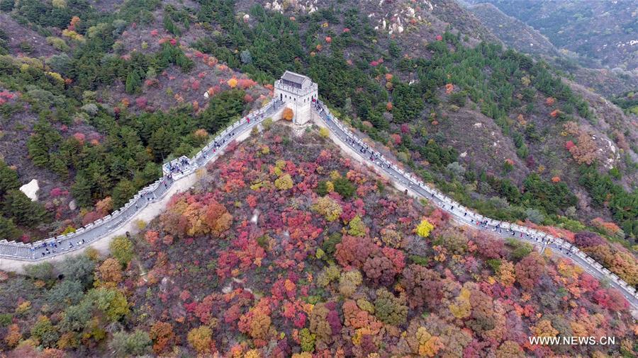 Se tiñe de rojo el Parque Forestal Nacional de Badaling en Beijing