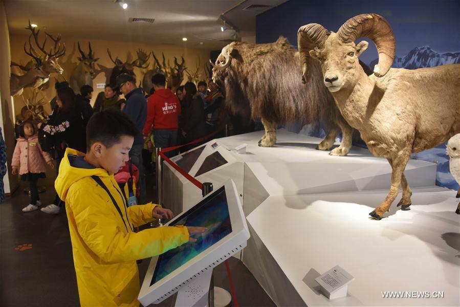 China abrirá museo digital para exponer aldeas tradicionales