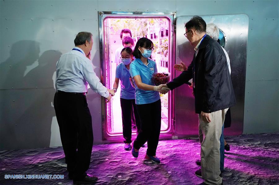 Voluntarios chinos baten récord tras pasar 370 días en cabina aislada