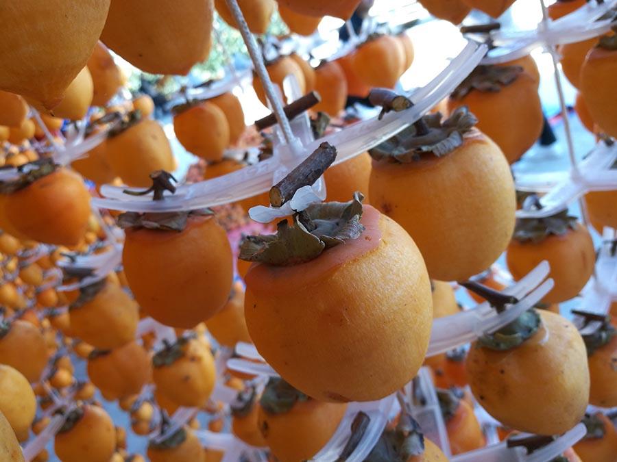 ESPECIAL: La fruta que sacó de la pobreza a los vecinos de los Guerreros de terracota