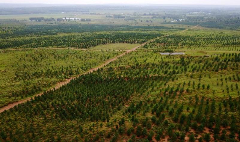 China destina una cuarta parte de su superficie terrestre a protección ecológica
