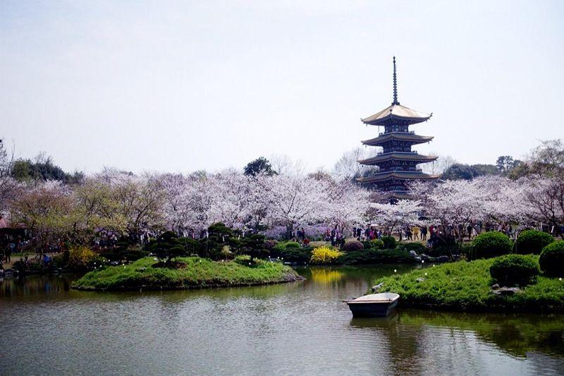Principales sitios turísticos de provincia china de Hubei reciben más de 2 millones de visitantes durante vacaciones