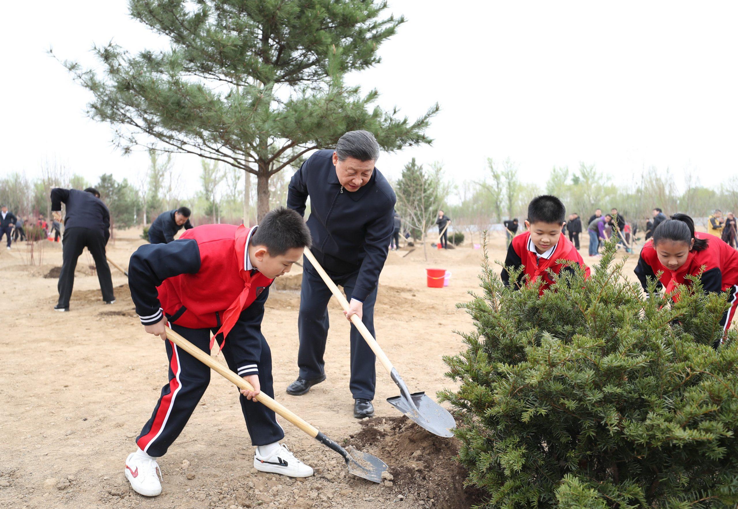 Viceprimer ministro chino subraya importancia de forestación nacional