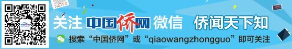 中国海外华人网官方微信账号输入