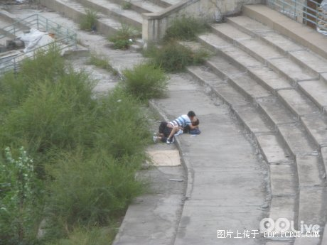 Chinese students make love in public.