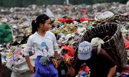 Les Etats-Unis n'arrivent plus à vendre leurs déchets aux chinois