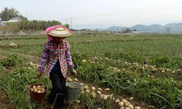 Hausse du revenu disponible des habitants ruraux