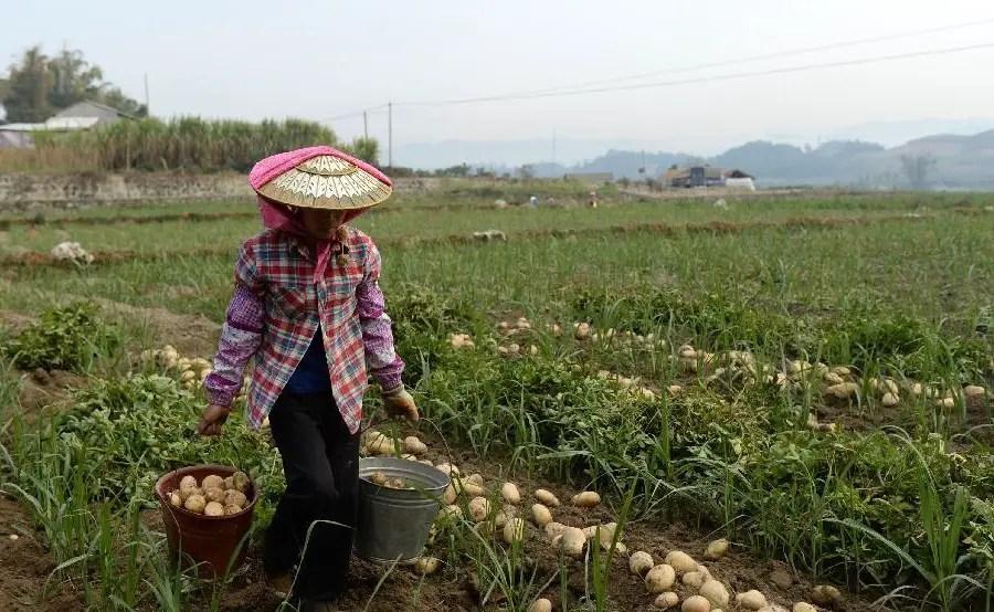 La Chine réussie sa lutte contre la pauvreté