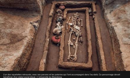 Découverte de squelettes d'homme d'1m80