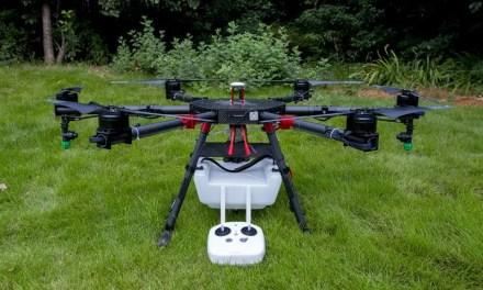 Des drones pour récolter le thé