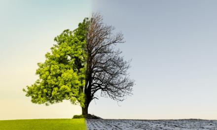 Taiwan veut atteindre la neutralité carbone d'ici 2050