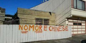 47 - 街头涂鸦辱骂华人的家伙抓住了
