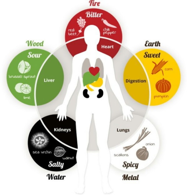 5 elements chart : Chinese Medicine Living