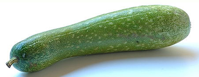 Fuzzy Melon A Diuretic To Expel Toxins