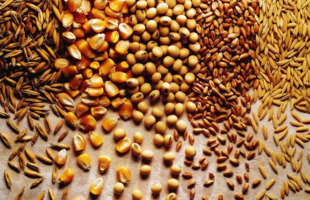 Grains for inflammation : Chinese Medicine Living