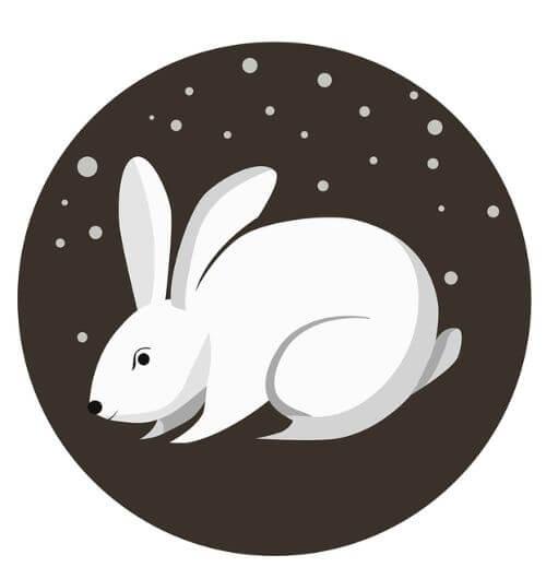 rabbit horoscope 2021