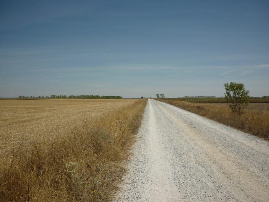 La strada tra Carion de los Condes e Calzadilla de la Cueza