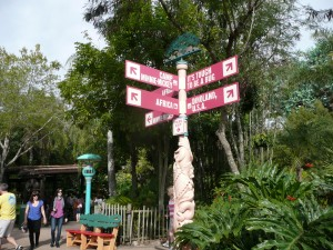 Disney World Quick Tips - Miscellaneous Tips I have learned 1