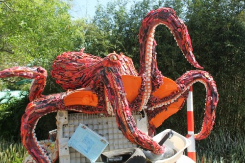 SeaWorldOctopus