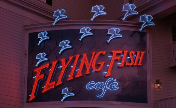 flyingfish-613x377