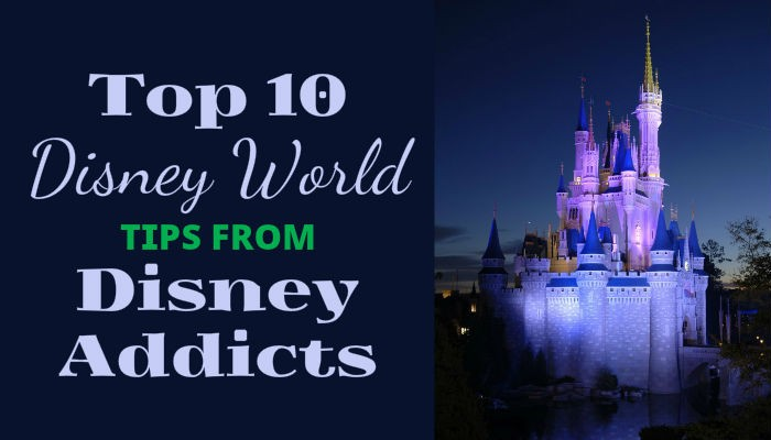 WDW Disney Addicts