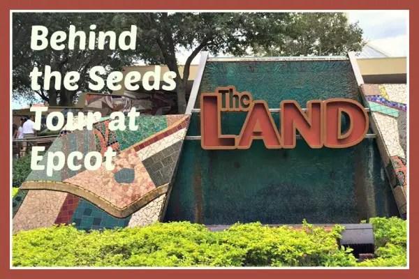 The Land Image