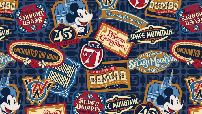 Magic Kingdom 45th