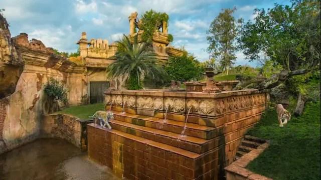 Maharajah Jungle Trek Animal Trails