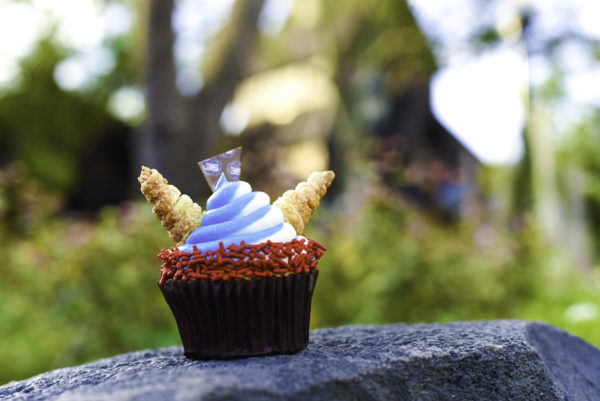 Epcot Celebrates 35 Years with Special Cupcakes at Epcot International Food & Wine Festival 3