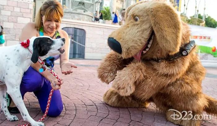 More Details Emerge Regarding Disney World's New Dog-Friendly Resorts 1