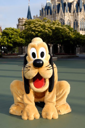 Celebrate the Year of the Dog with Pluto at Tokyo Disney Resort 2