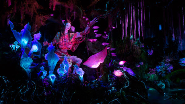 Na'vi language creator visits Pandora World of Avatar