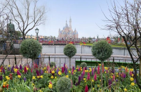 Shanghai Disneyland Spring