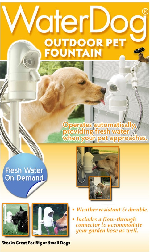 screenshot 092 Automatic Dog Water Fountain Keeps Fido Hydrated While Youre Out