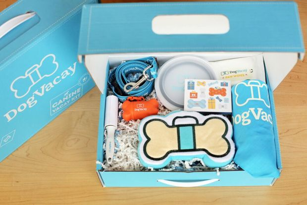 vacay-kit-unboxed-dogvacay