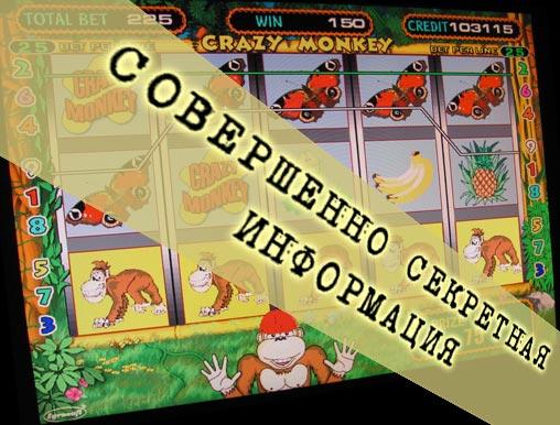 Секреты игровых автоматов Crazy Monkey Обезьяны